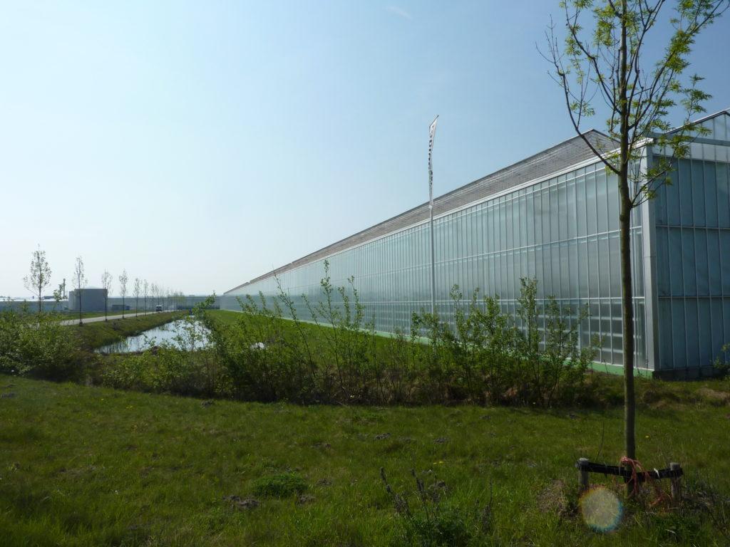 Van agrarisch gebruik naar glastuinbouw, wonen en werken op De Glasparel.